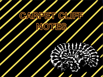 Carpet Cliff Notes- Episode 2 Intro to Carpet Python Morphs